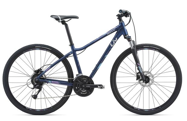 GIANT Rove 2 Disc DD 2018